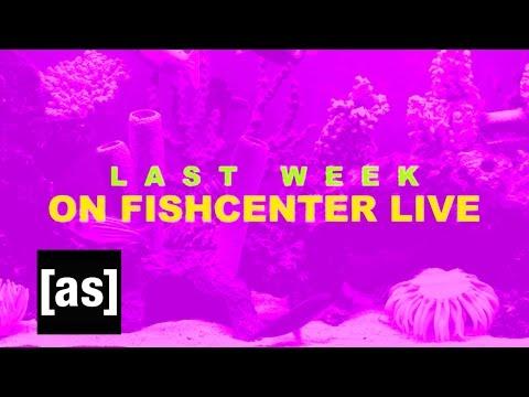 FishCenter Recap 4/24/17 | FishCenter | Adult Swim