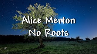 Download Lagu Alice Merton - No Roots - Lyrics Gratis STAFABAND