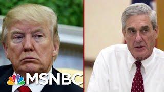 New Mueller Transcript As Rare As A 'Unicorn Sighting'   Deadline   MSNBC
