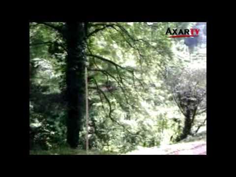 Batumi Botanika Bağı