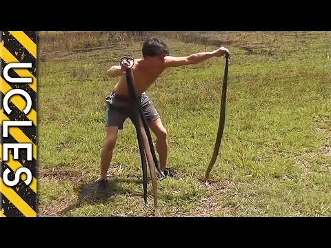 Catching Wild Rabbits using Snakes: BAREHANDED Rabbit hunting