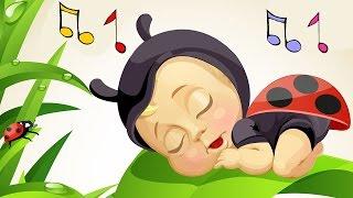 Download Lagu Baby Lullabies and Nature Sounds Gratis STAFABAND