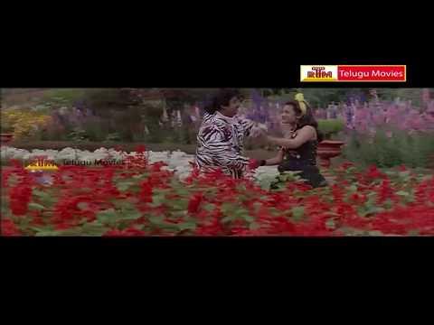 Raja Simha - Telugu Movie Superhit Songs - Vijayakanth ,sivaranjani,jayasudha video