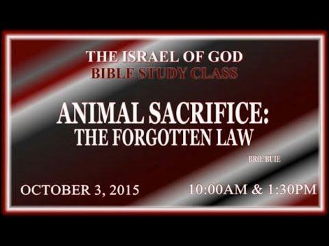 "IOG - ""Animal Sacrifice: The Forgotten Law"" 2015"