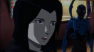Robin and Raven AMV