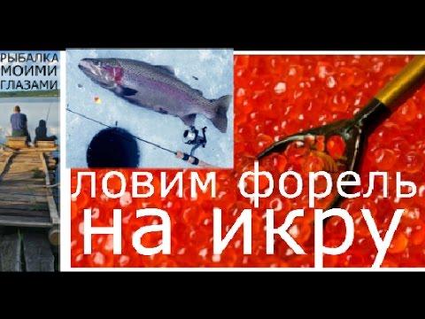 ловить на красную икру
