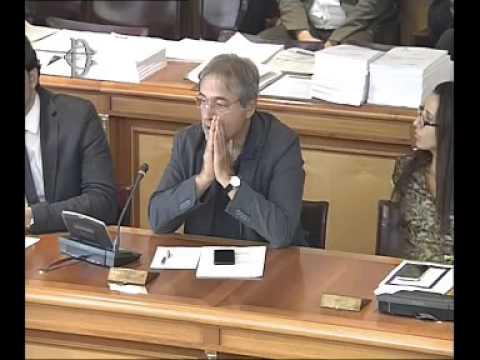 Roma - Audizione Tirrenia-Compagnia Italiana di Navigazione SpA (15.07.15)