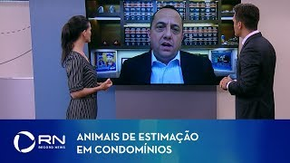 Animais de estimação em condomínios: especialista explica direitos e deveres