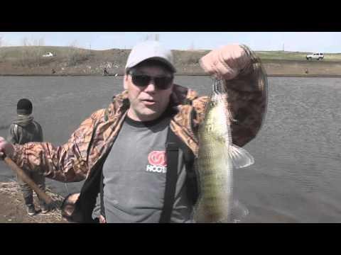 рыбалка уртазым прогноз