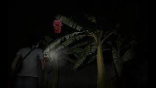 Heboh Video KUYANG ASLI Ketahuan Sedang Mengincar Mangsa!!