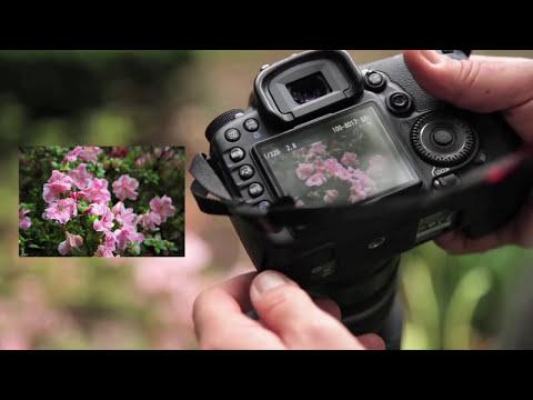 Video Informativo Curso Completo en Fotografía Profesional del NYIP-EDLatam en Español