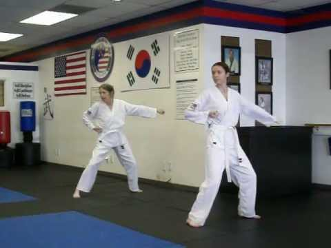 Hand Techniques - Soo Gi's - Tang Soo Do Karate 8th Gup Belt test Image 1