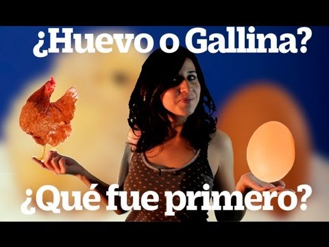 Qu fue primero, la gallina o el huevo? (Which Came First, The Chicken or the Egg?)
