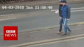 The Skripal suspects