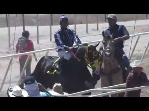 El Shaka vs El Patron