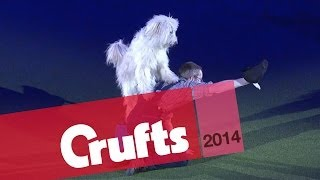Heelwork to Music   Freestyle International   1st Place   Crufts 2014