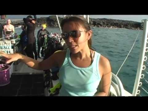 Current TV Host Angela Sun dives with Manta Rays. At Night! in Kona Hawaii