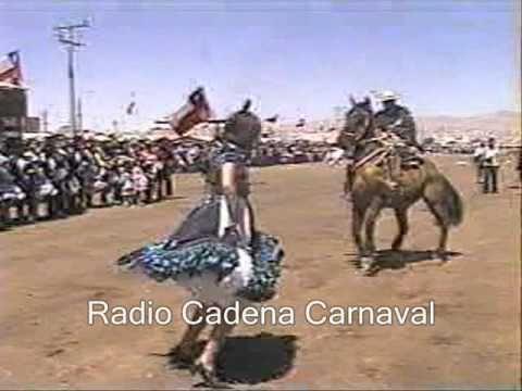 Caballo baila cueca en Calama (cueca con riendas)