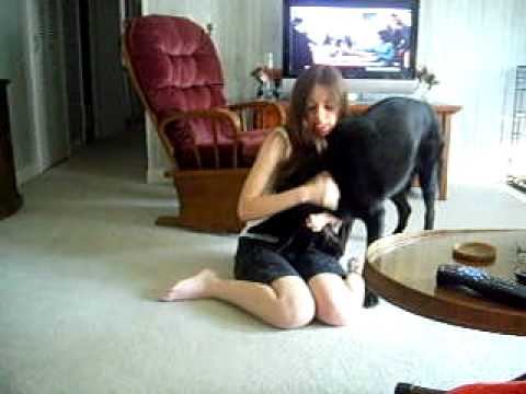 girl-playing-with-dog.html