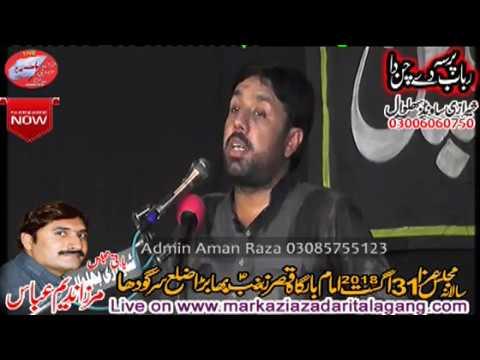 Zakir TAqi Abbas Qayamat 31 August 2018  Bhabra
