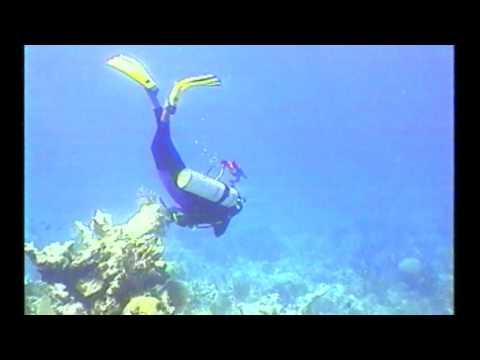 Underwater Explorer   Diving The Cayman Islands