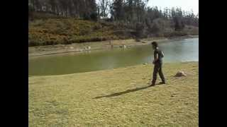Maatraan - Maatraan Ooty Location Video [ Fight Scene ]