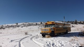Converted School Bus In The Colorado Wilderness