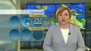 В предстоящие выходные на европейской территории России сохранится холодная погода
