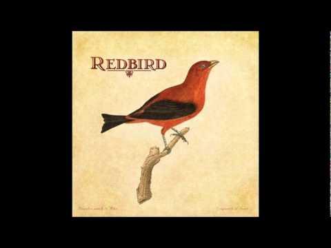 Redbird - Patience