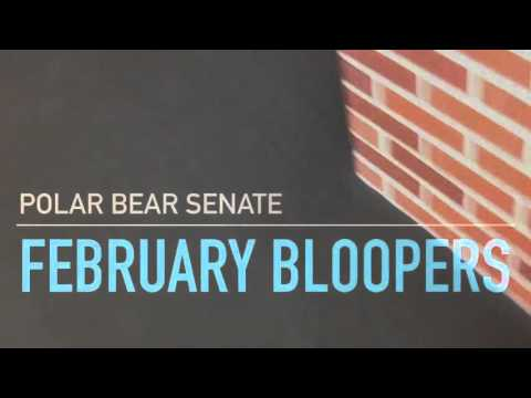 Polar Bear News February Bloopers
