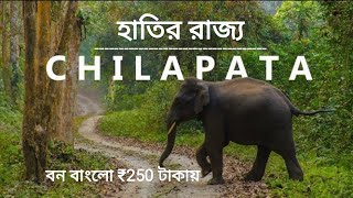 Chilapata 250 টাকায় বনবাংলোতে থাকুন || Mendabari Jungle Camp || Chilapata forest || Dooars tour