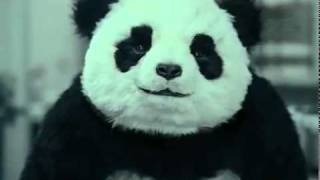 Thumb Comercial de Queso: Nunca digas NO a un Panda (Never Say No To Panda Cheese)