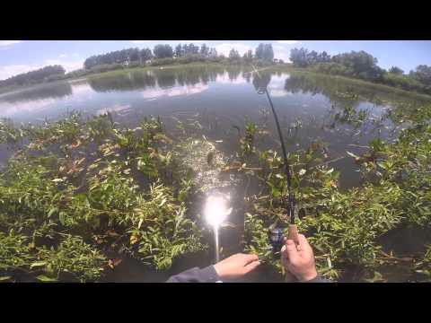 рыбалка в ксеньевке