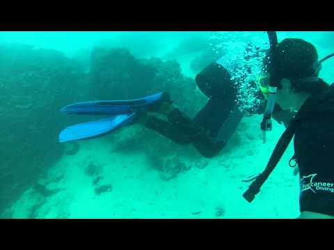 SCUBA Diving Paje Zanzibar - GoPro Dive Housing