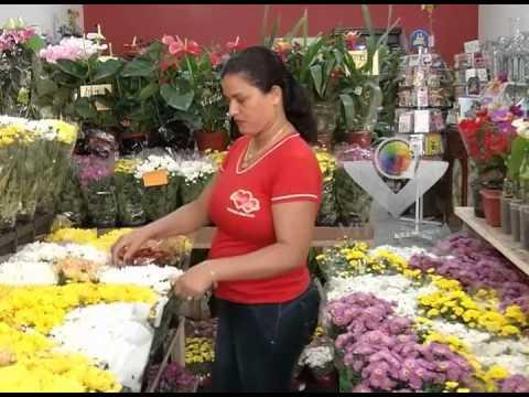 Pela primeira vez floriculturas de Uberlândia estarão abertas no Dia de Finados