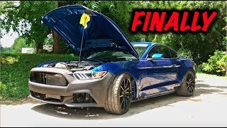 Rebuilding A Wrecked 2017 Mustang GT Part 11