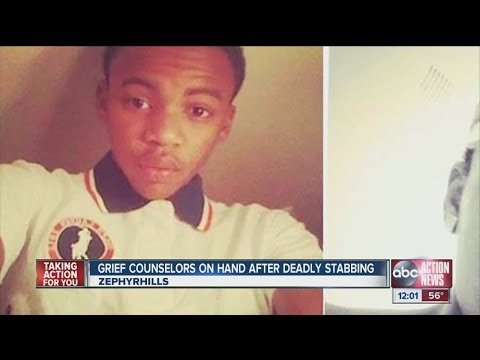Grief counselors at Zephyrhills High School following stabbing death of student
