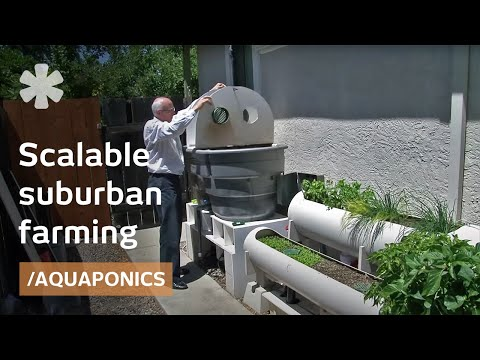 Internet Of Farming  Arduino Based, Backyard Aquaponics