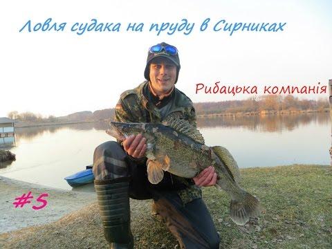 пруд инженерный калининец рыбалка