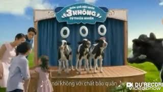 Gốc và tua ngược:Quảng cáo sữa Vinamilk 100% hát ngược