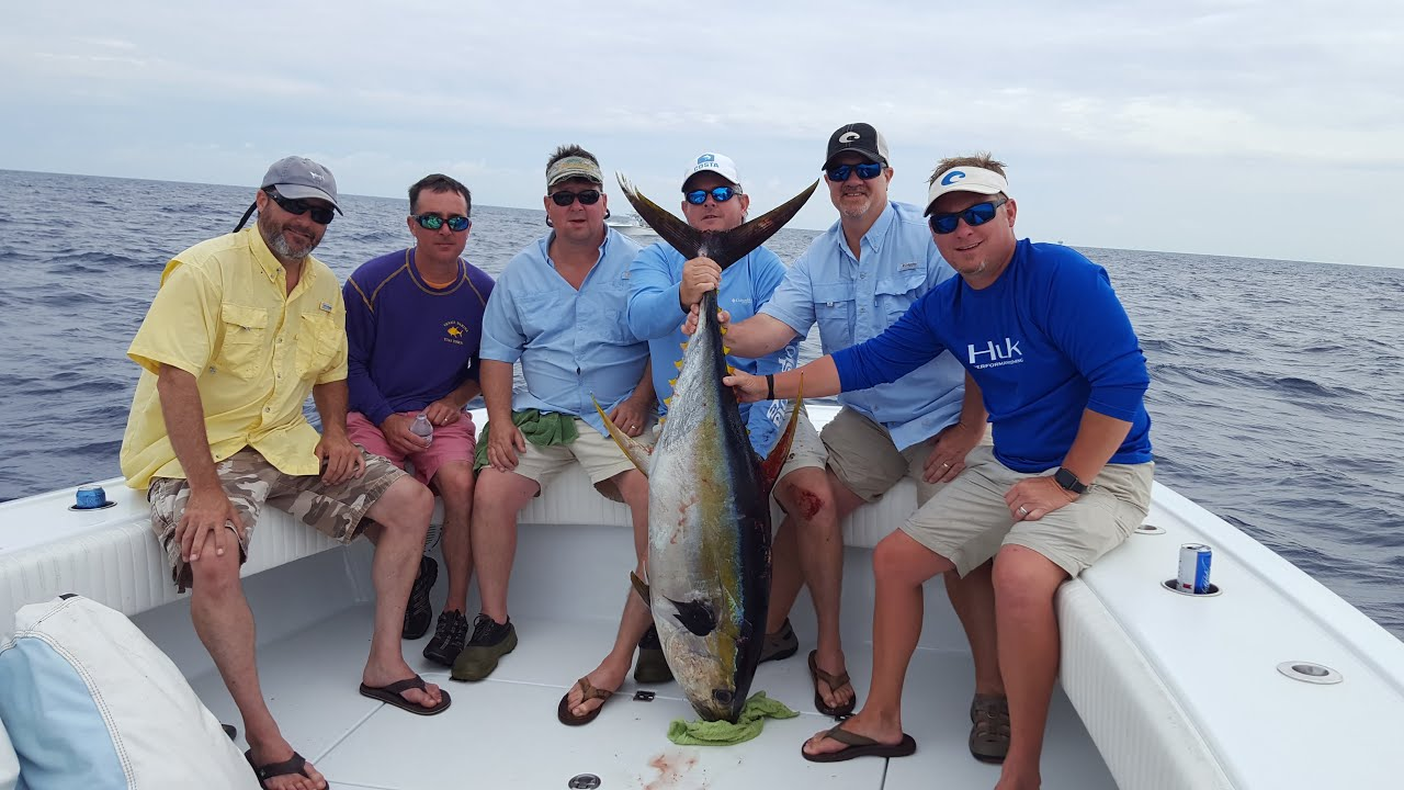 Venice Tuna Fishing May 2016 with Capt Billy Wells  quot Wild Bill quot