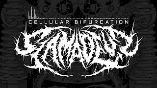 SLAMADEUS - CELLULAR BIFURCATION [SINGLE] (2021) SW EXCLUSIVE
