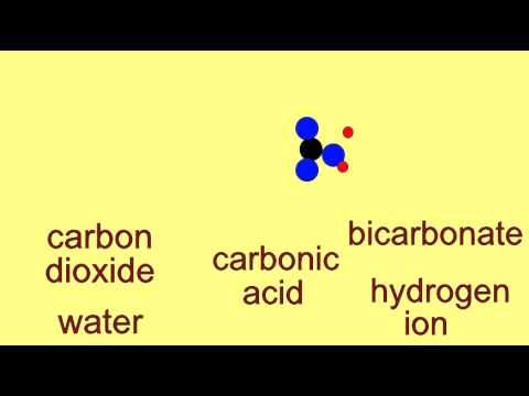 chemistry buffers bicarbonate buffers Chemistry dictionary definition of buffers (acid-base) what are acid-base buffers buffer solutions resist ph changes.