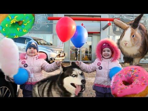 СЛАДКАЯ ВАТА Катание на ХАСКИ Научное ШОУ Контактный ЗООПАРК Видео для детей