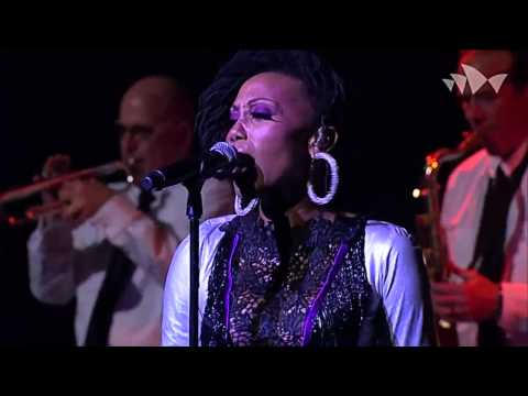 Nile Rodgers - Live @ INXS, 2013 (& Chic)