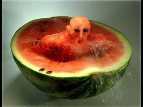 Crazy Food Art Music Videos