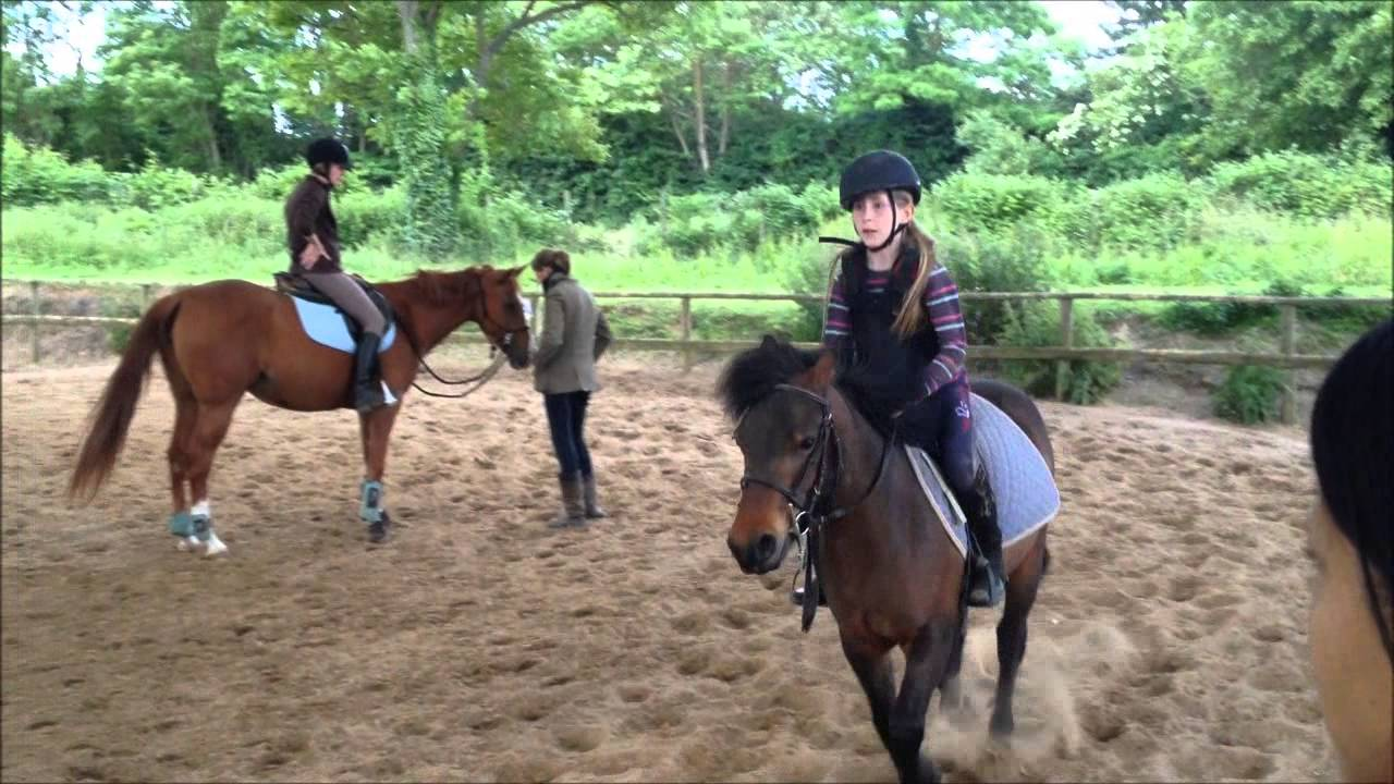 Equitation cours de saut d 39 obstacle rod o et chute youtube - Frison saut d obstacle ...
