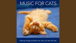 Piano Music For Pets