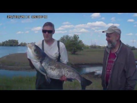 рыбалка май 2016 волгоград