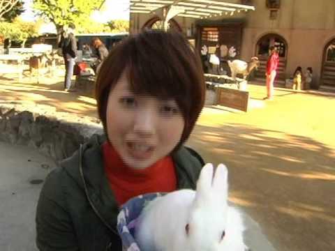 王子動物園の音図鑑(動画版)VOL4